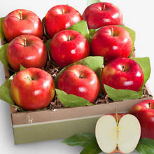 Fancy Fruit Packs - Apples