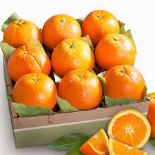 Fresh Fruit - Oranges