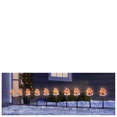 14' Gingerbread House Light Set