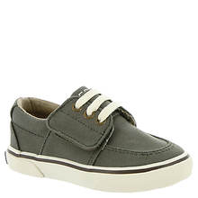 Sperry Top-Sider Ollie Jr (Boys' Infant-Toddler)