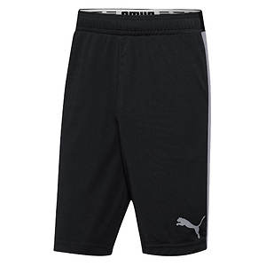 Puma Men's Tilted Formstripe Shorts