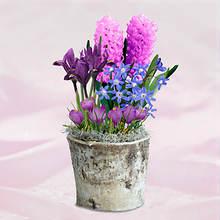 Shades of Lavender Bulb Basket