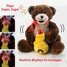 Musical Hunny Bear