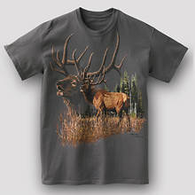 Wildlife Adventure Tee - Elk