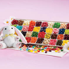 Jelly Belly Festival