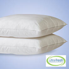 Ultra Fresh 2 Pack Pillows