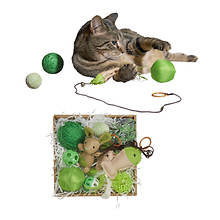 11-Piece Cat Toy Set