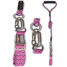 Helios Dura-Tough Pet Leash with Collar