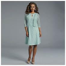 Lace Dress & Jacket Set