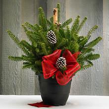 Christmas Greenery Porch Pot