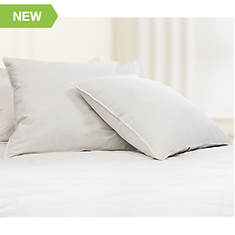 2-Pack Euro Square Pillows