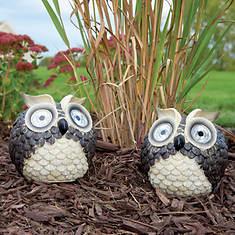 Set of 2 Solar Garden Pals-Owl