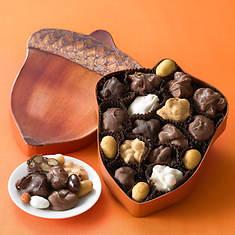 Nutty Acorn Assortments - Chocolates