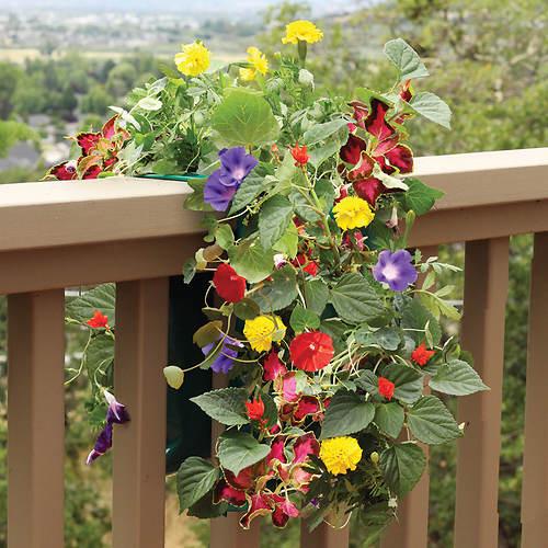 Vertical Garden Kits- Set of 2