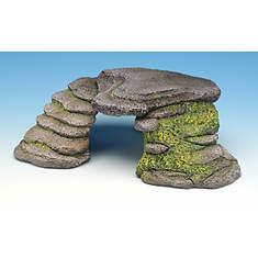 Reptile Step Ledge & Cave
