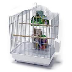 Small Bird Starter Kit
