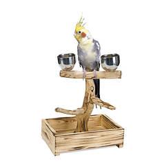 Bird Perch with 2 Stainless Steel Cups - Small/Medium Birds
