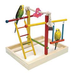 Medium Bird Activity Center