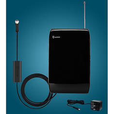 Curved-Panel Indoor Antenna