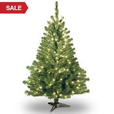 4' Kincaid Spruce with Clear Lights