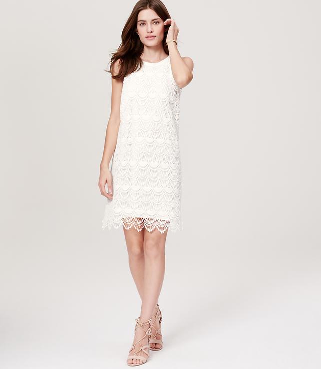 Loft Scallop Lace Womens Dress