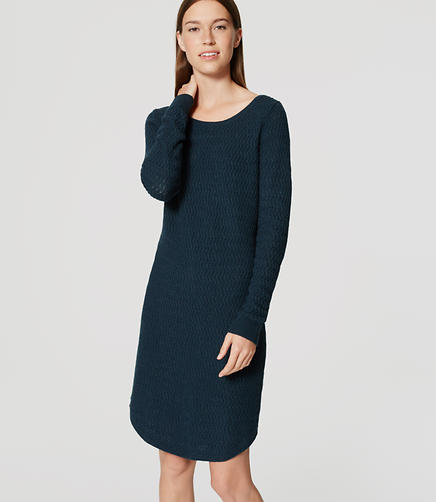Image of Petite Textured Sweater Dress