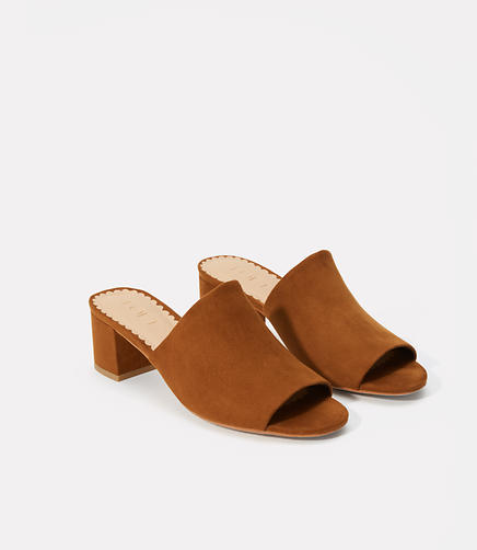 Image of Modern Mules