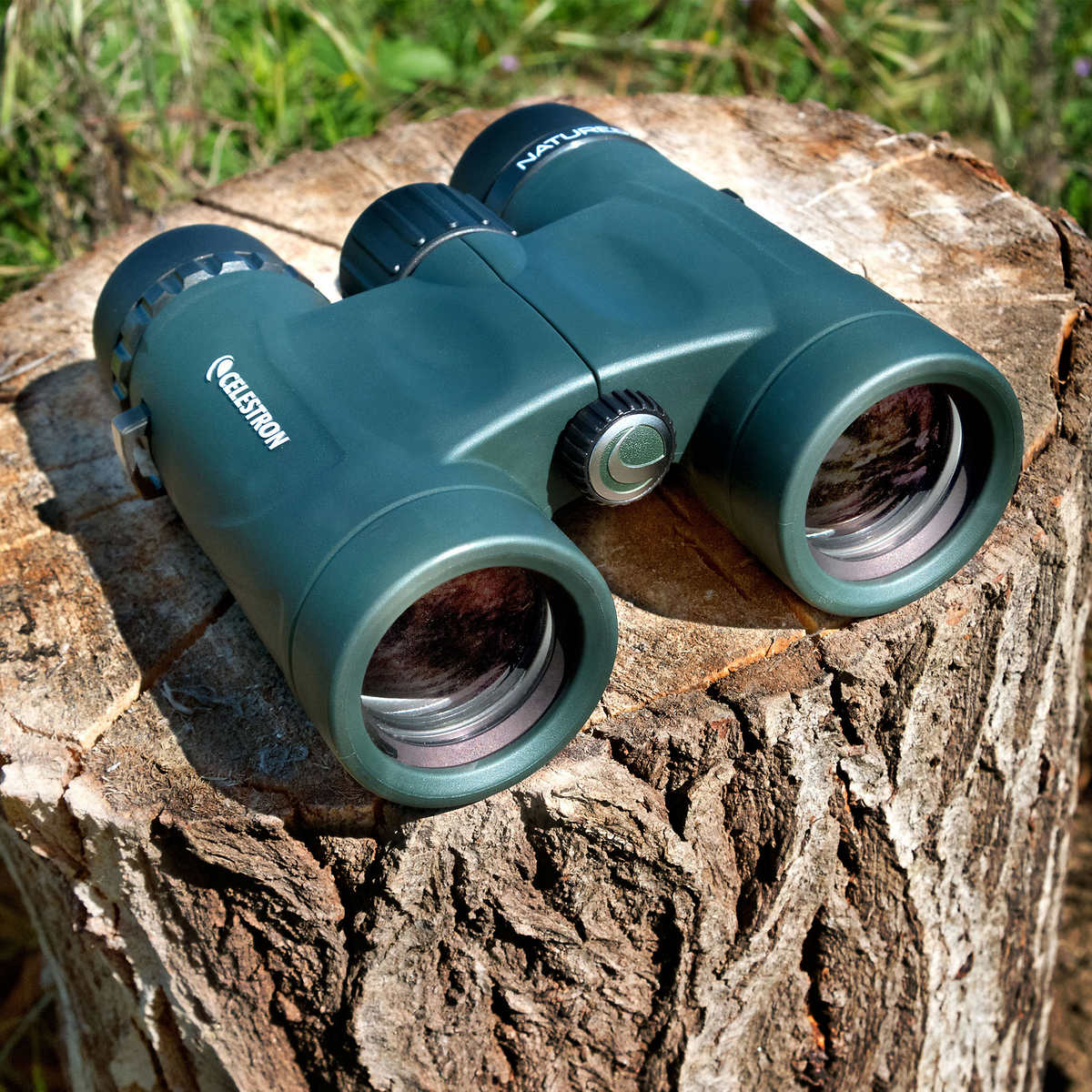 Celestron Nature DX 8 x 32 mm Binoculars