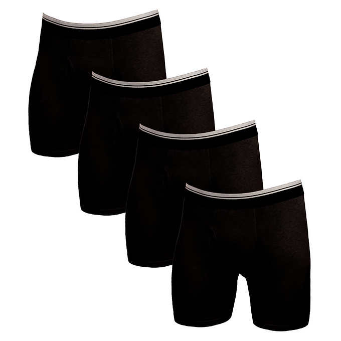 8f888012c9cdb Kirkland Signature Boxer Brief, 4-pack
