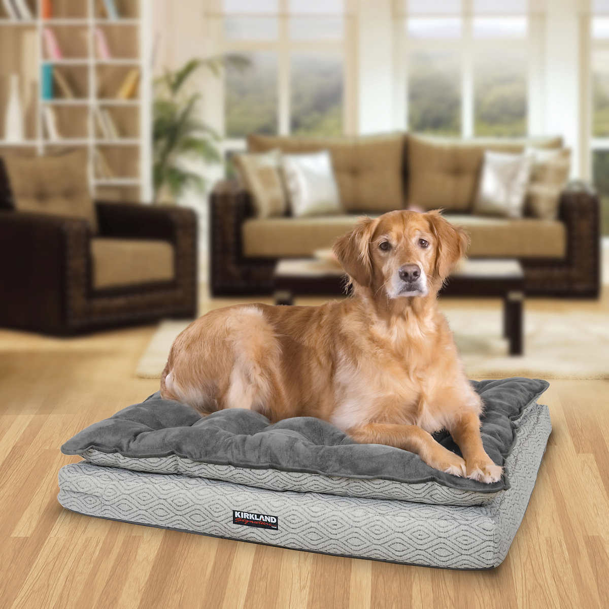 dog beds | costco