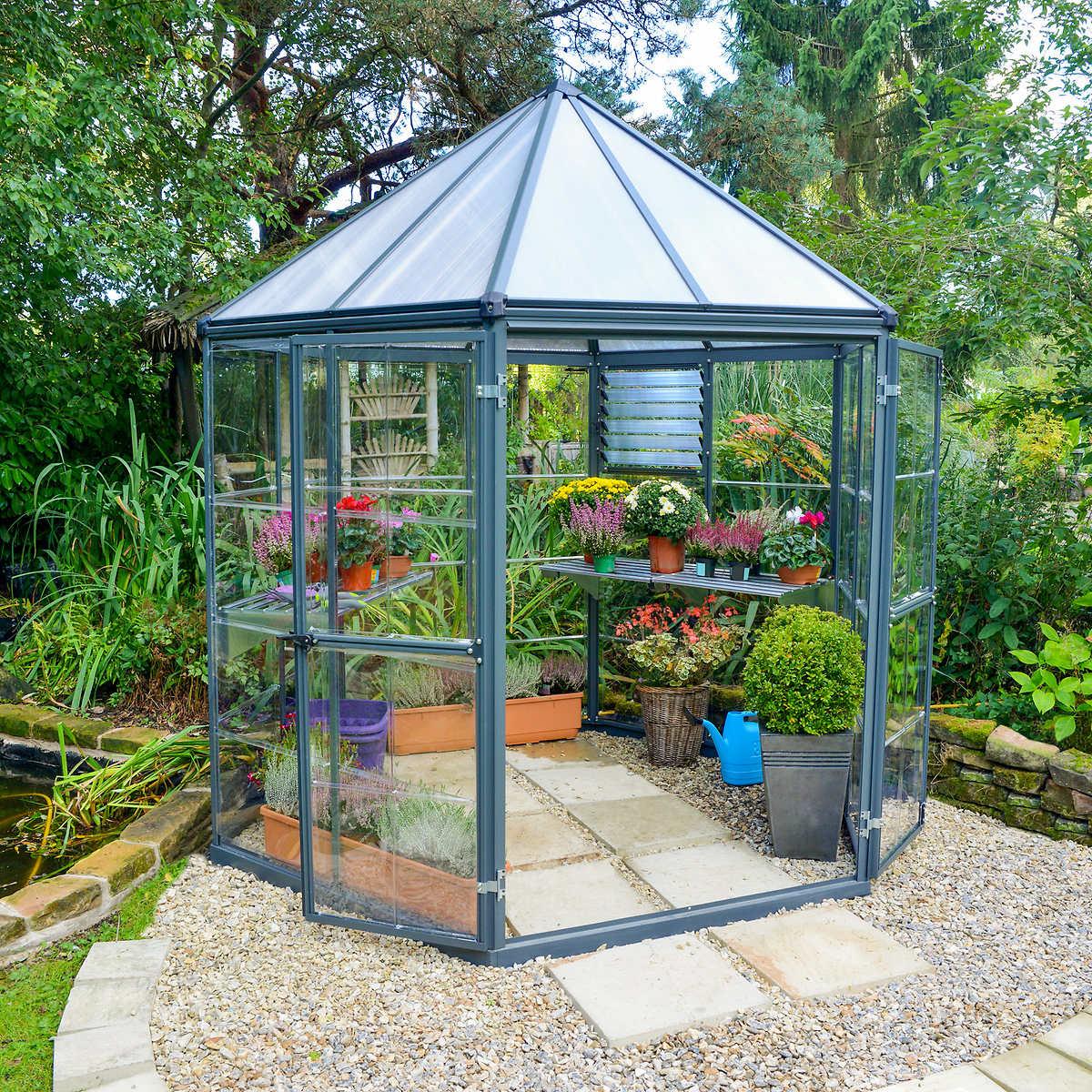 harmony 6 u0027 x 8 u0027 greenhouse with starter kit