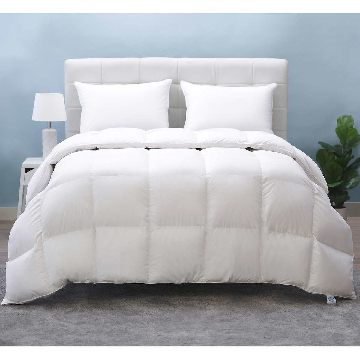 down comforters costco