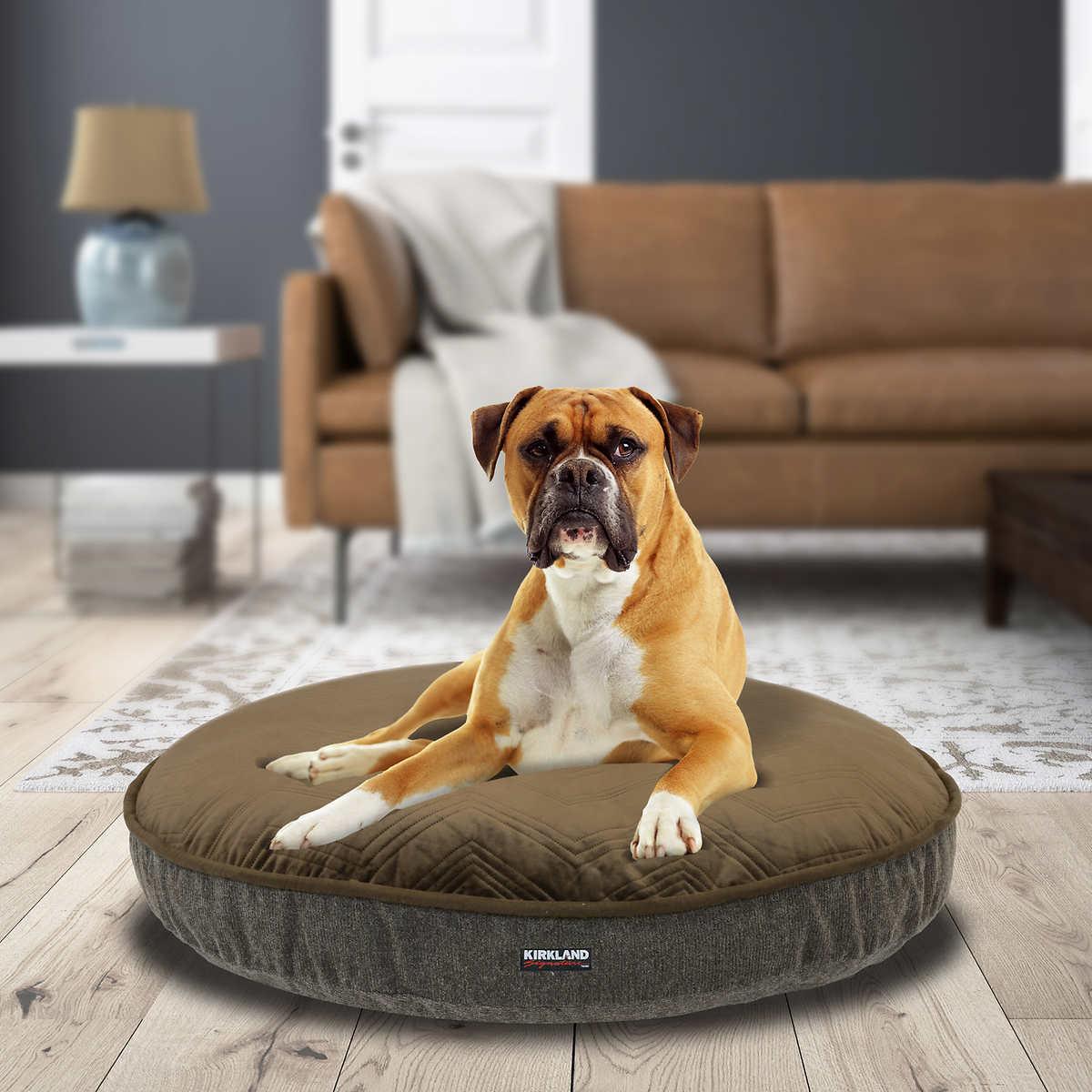 dog beds | costco