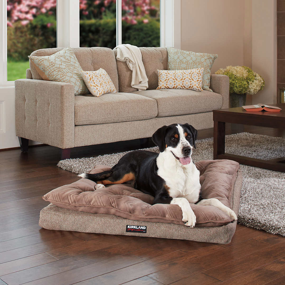 Dollar Tree Dog Beds
