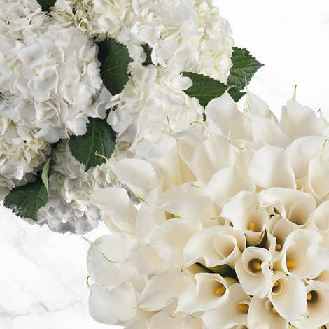 40-stem Calla Lilies & 20-stem Hydrangea