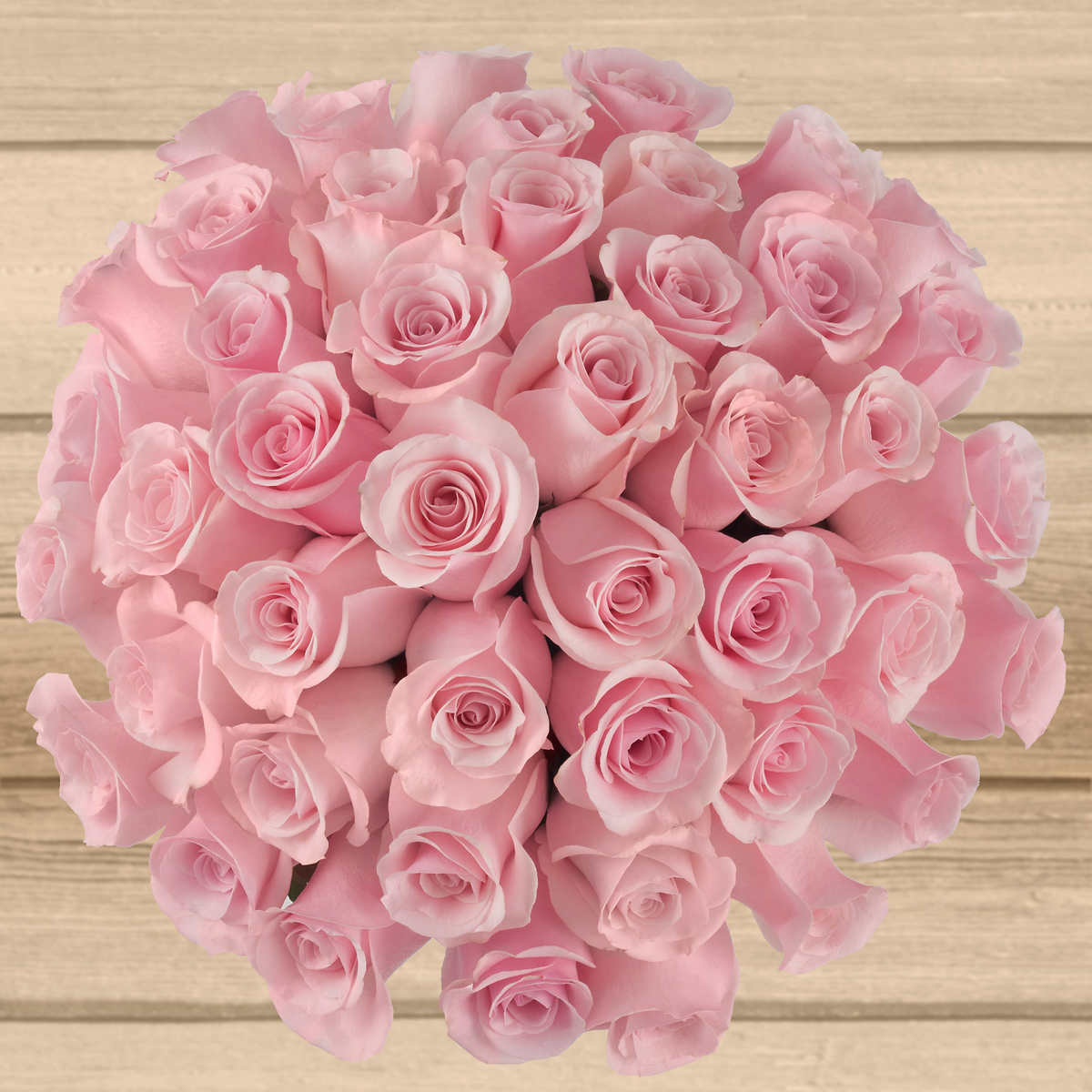 50 Stem Light Pink Roses