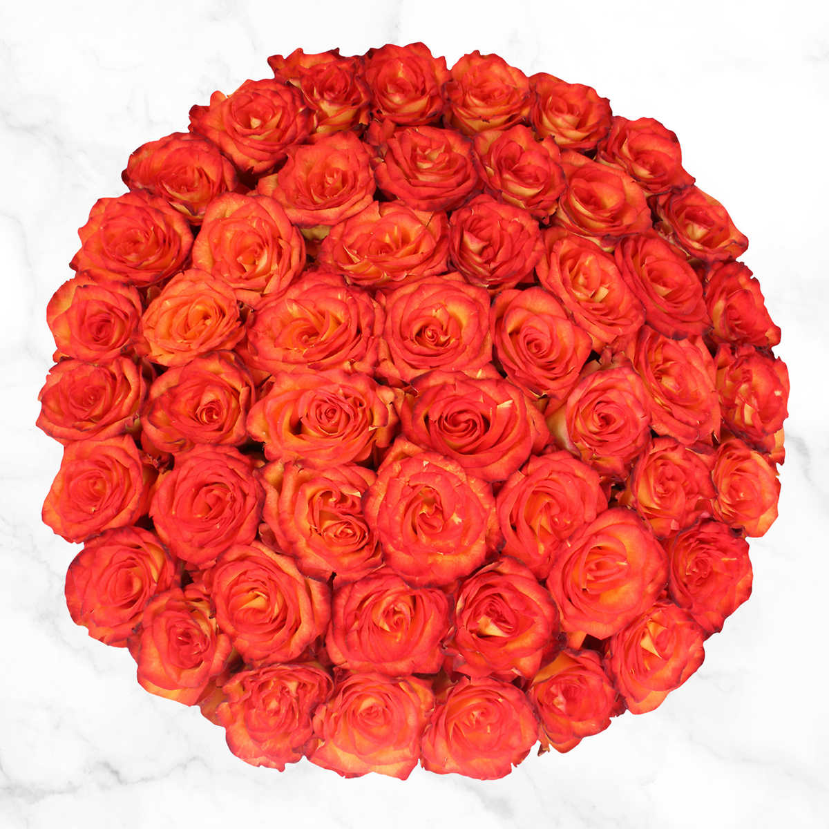 Home bulk roses peach roses - Member Only Item