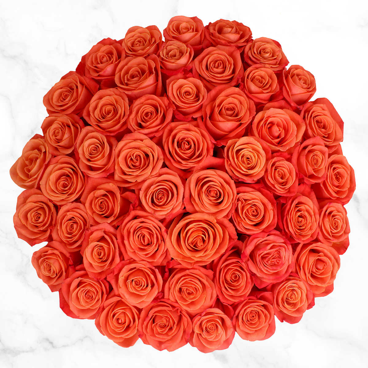 Home bulk roses peach roses - 50 Stem Orange Roses Item 1183433 Click To Zoom
