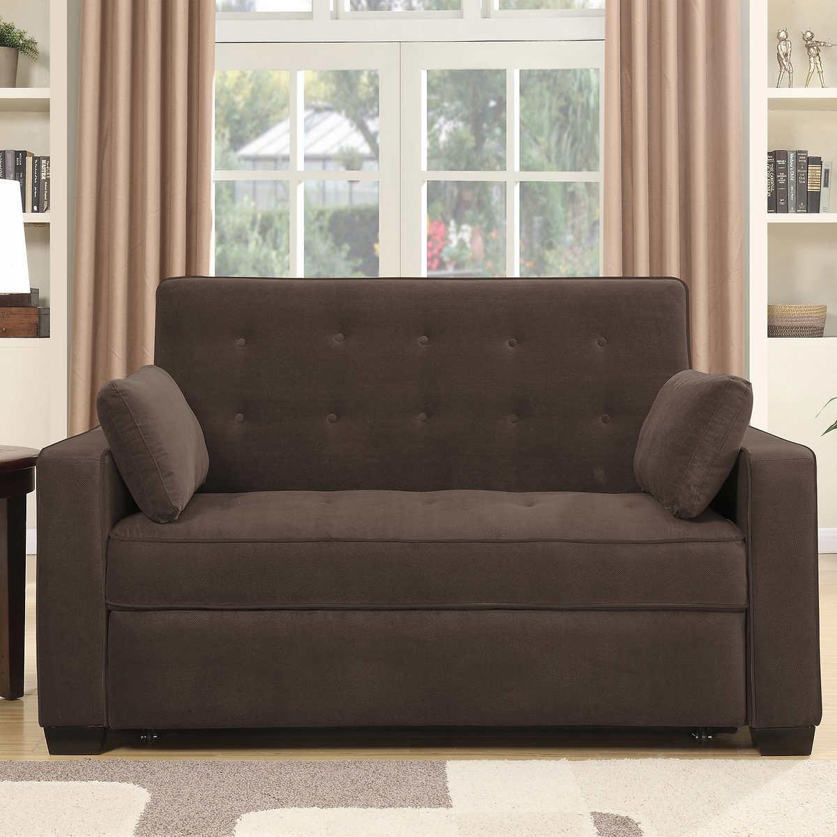 Twin Sofa Sleeper Costco   Awesome Home