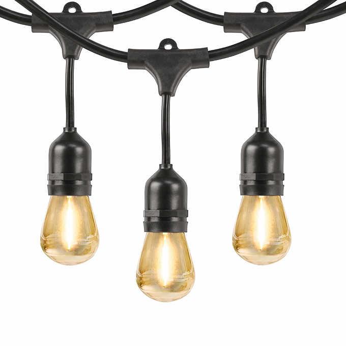 729585ac31f586 Feit 48' LED Filament String Light Set