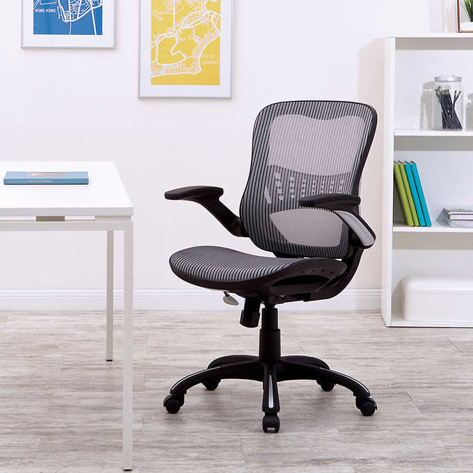 Pleasing Worksmart Breathable Mesh Seat And Back Managers Chair Bralicious Painted Fabric Chair Ideas Braliciousco