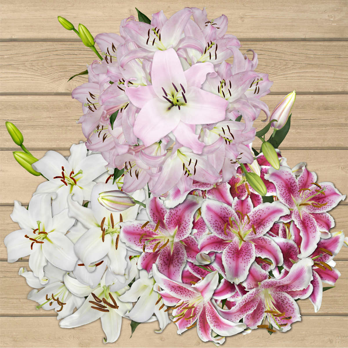 Bulk flowers costco 50 stem assorted oriental lilies dhlflorist Choice Image