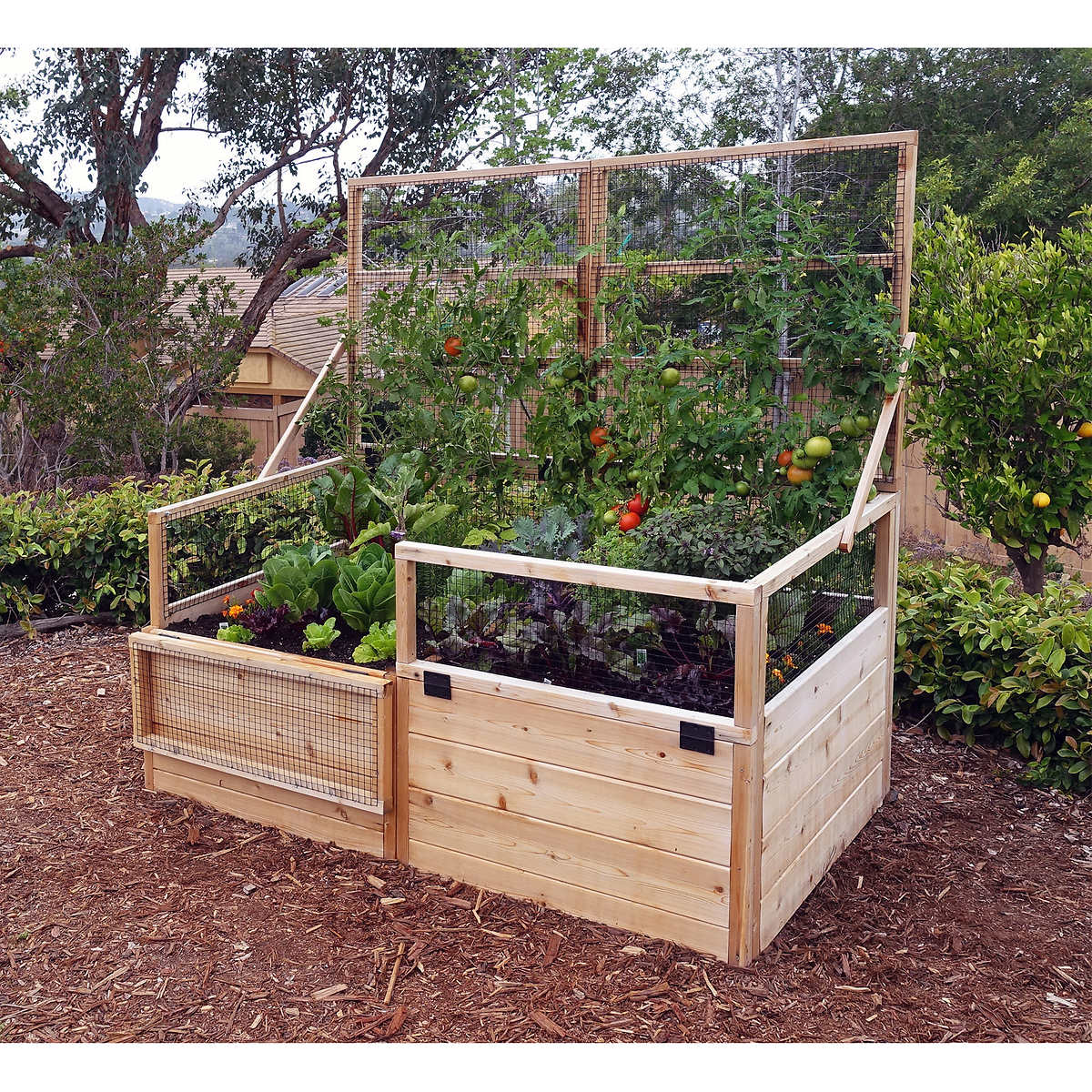 Cost To Build Raised Growing Beds