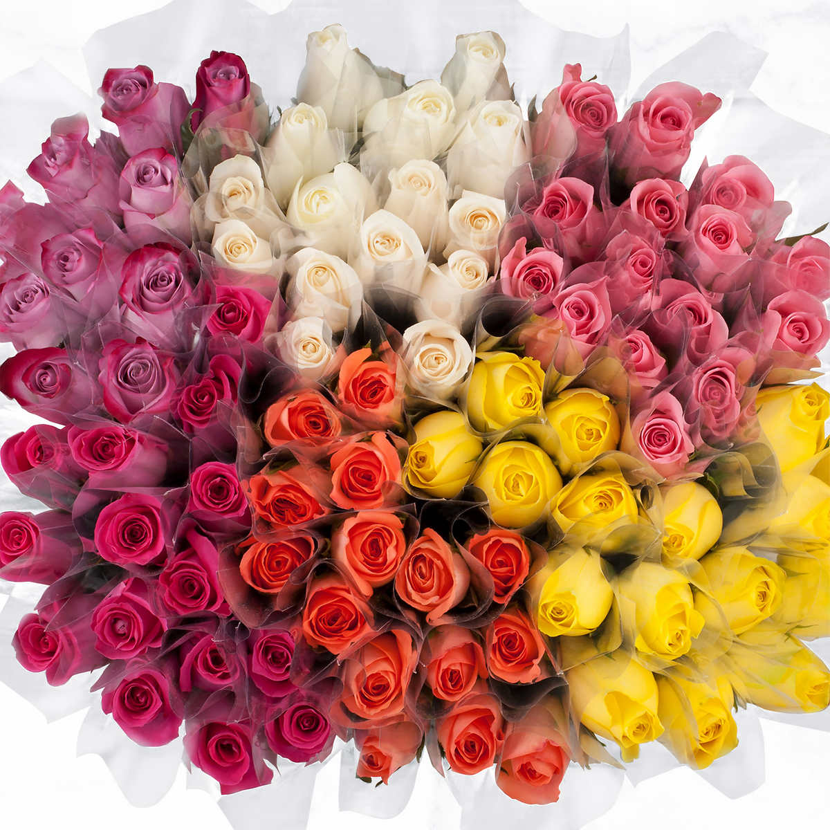 Online Whole Flowers Canada From China