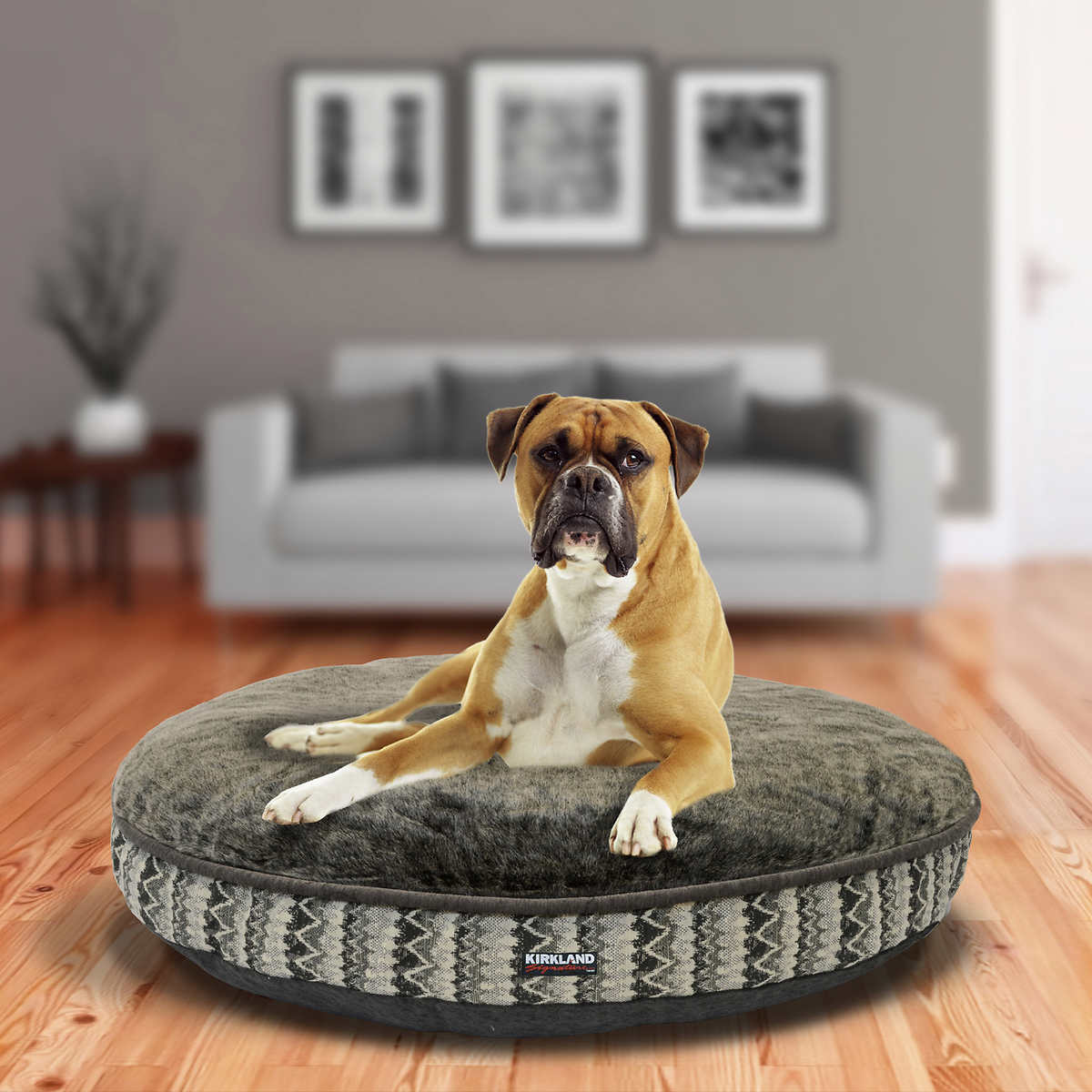 Sofa Protector For Pets Images Furniture Pet Couch Cover