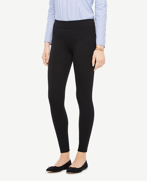 Side Zip Leggings at Ann Taylor in 753 Eastvi Victor, NY | Tuggl