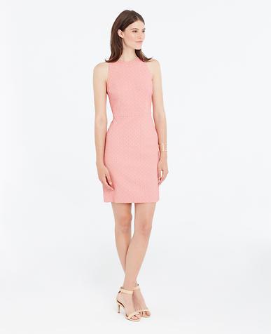 Dresses Ann Taylor
