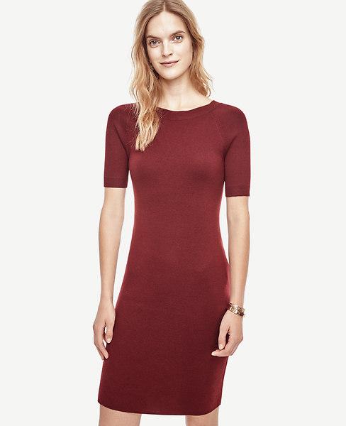 Extrafine Merino Wool V-Back Sweater Dress