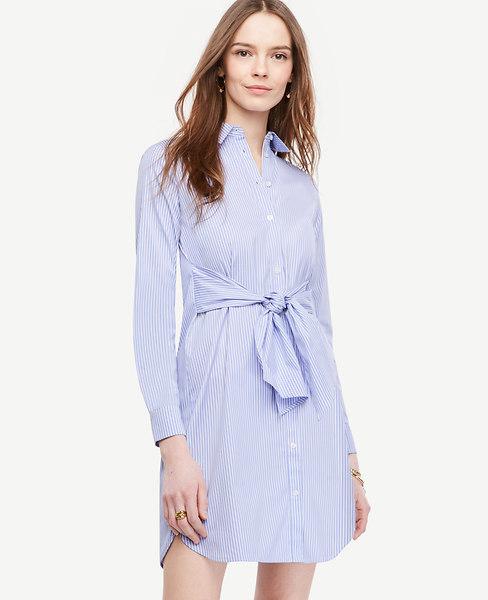 Striped Cinch-Waist Poplin Shirtdress