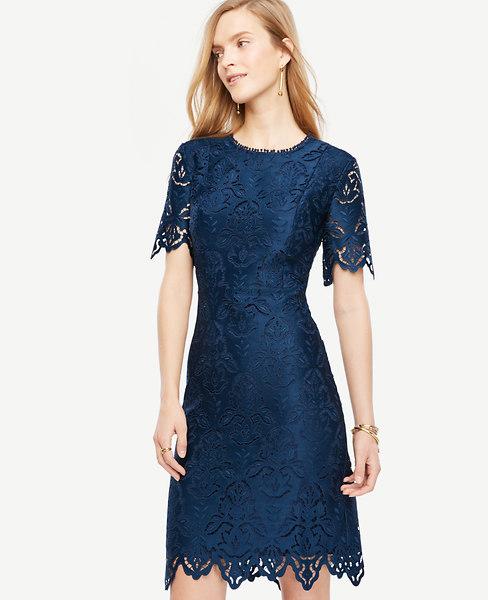 Botanical Lace Sheath Dress